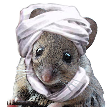 Over a hundred years later, and the Mouse Taliban remains a potent, adorable force.