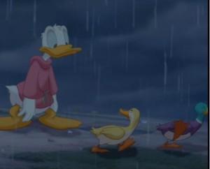 ...ducks...